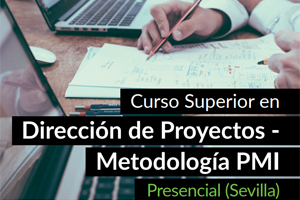 Curso Superior en Dirección de Proyectos Project Management Institute (PMI) - Sevilla